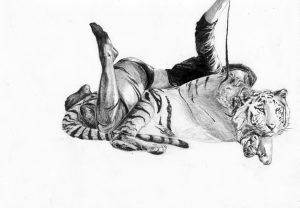 Tiger Tiger: Folds and Stitches - The Sketchbook Project